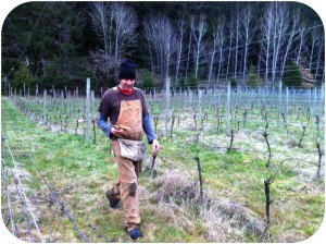 Barnaby Tuttle in his Alsea Vineyard