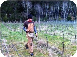 Barnaby Tuttle in his Alsea Vineyard