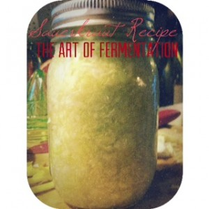 The Art of Fermentation Sauerkraut