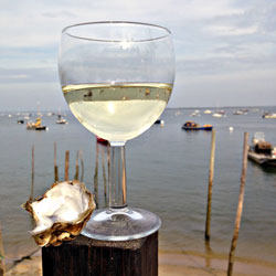 Chateau Tariquet White Bordeaux Glass & Oyster